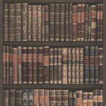 Book Shell Thematic Wallpaper – Bright